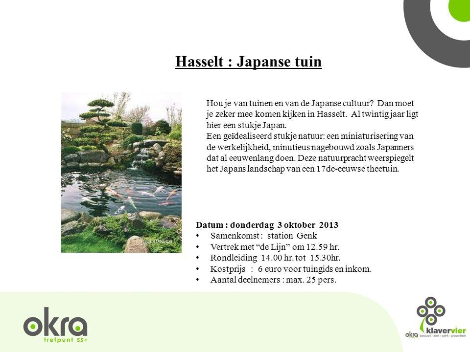 Hasselt : Japanse tuin Hou je van tuinen en van de Japanse cultuur.