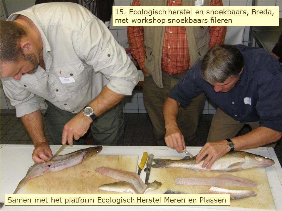 16. Inzet van vrijwilligers bij monitoren van visbestanden, Lelystad