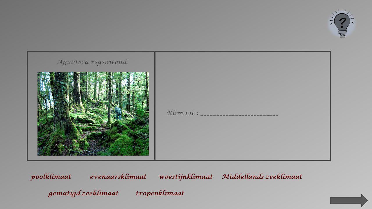 2.Kenmerken van de klimaten in de wereld.