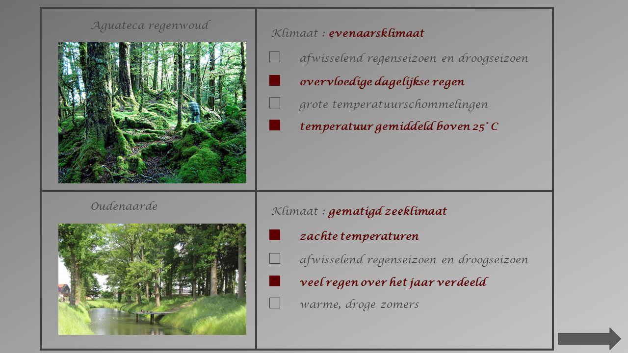 2.Kenmerken van de klimaten in de wereld. Zoek volgende plaatsen op in je atlas.