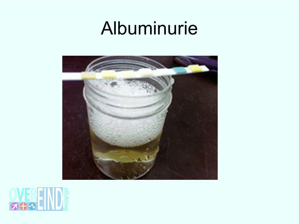 Albuminurie