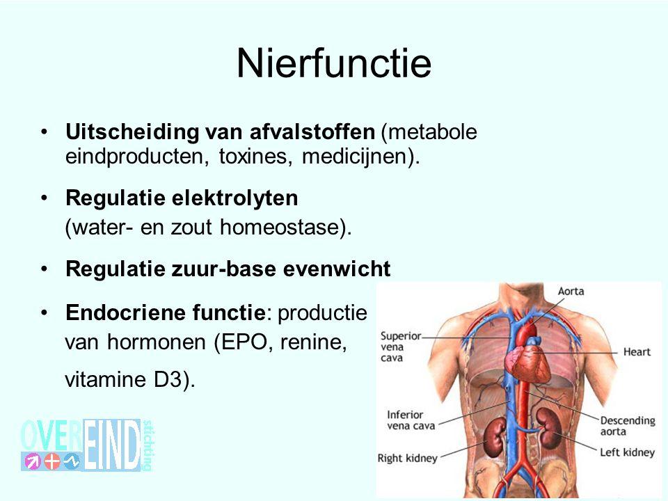 Nierfunctie Uitscheiding van afvalstoffen (metabole eindproducten, toxines, medicijnen).