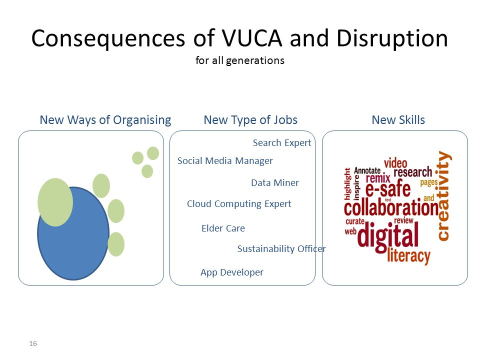 Consequences of VUCA and Disruption for all generations 16 New Ways of OrganisingNew Type of Jobs New Skills Social Media Manager Data Miner Cloud Computing Expert Elder Care Sustainability Officer App Developer Search Expert