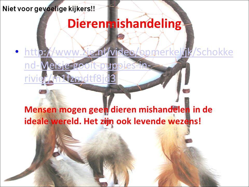 Dierenmishandeling http://www.zie.nl/video/opmerkelijk/Schokke nd-Meisje-gooit-puppies-in- rivier/m1fzmdtf8jd3 http://www.zie.nl/video/opmerkelijk/Schokke nd-Meisje-gooit-puppies-in- rivier/m1fzmdtf8jd3 Mensen mogen geen dieren mishandelen in de ideale wereld.