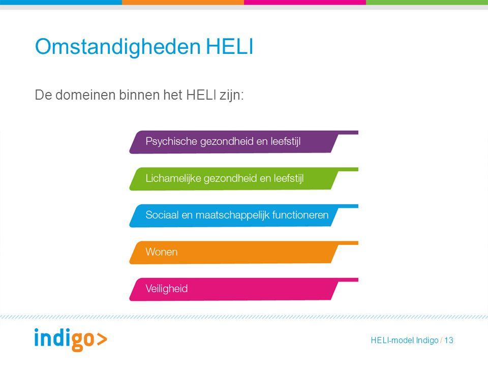 Omstandigheden HELI De domeinen binnen het HELI zijn: HELI-model Indigo / 13