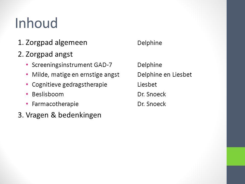 Inhoud 1. Zorgpad algemeen Delphine 2. Zorgpad angst Screeningsinstrument GAD-7Delphine Milde, matige en ernstige angstDelphine en Liesbet Cognitieve