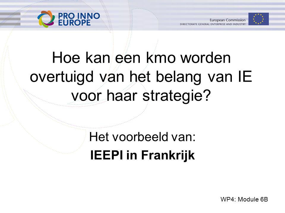 WP4: Module 6B Hoe kan een kmo worden overtuigd van het belang van IE voor haar strategie? Het voorbeeld van: IEEPI in Frankrijk