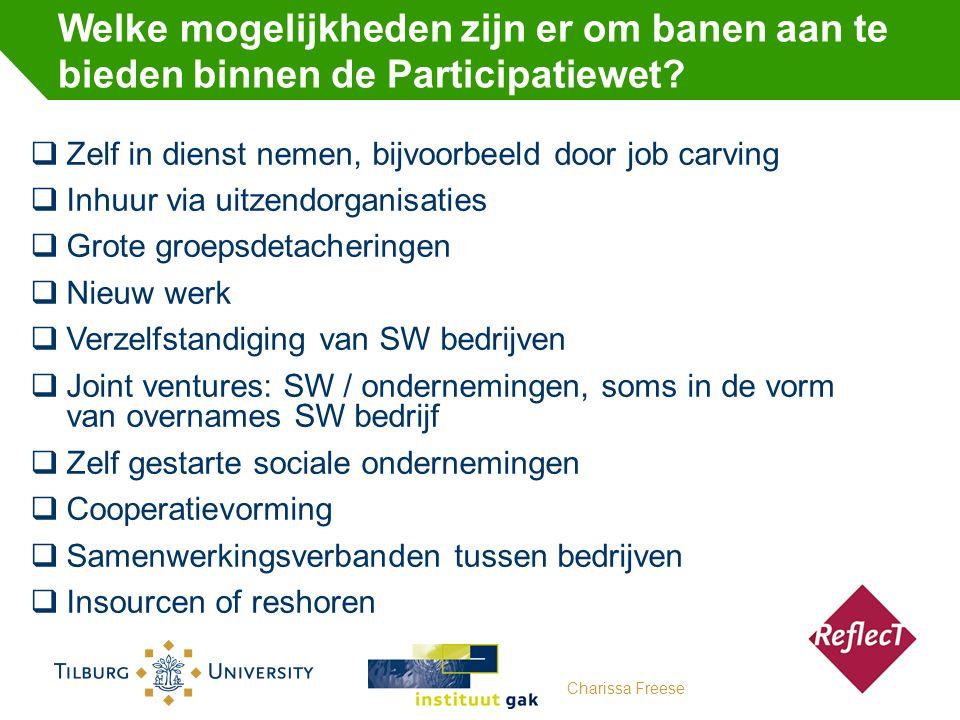 Welke mogelijkheden zijn er om banen aan te bieden binnen de Participatiewet.