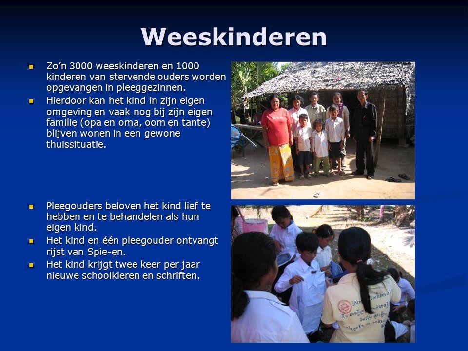 Weeskinderen Zo'n 3000 weeskinderen en 1000 kinderen van stervende ouders worden opgevangen in pleeggezinnen. Zo'n 3000 weeskinderen en 1000 kinderen