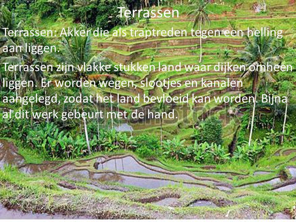 Terrassen Terrassen: Akker die als traptreden tegen een helling aan liggen. Terrassen zijn vlakke stukken land waar dijken omheen liggen. Er worden we