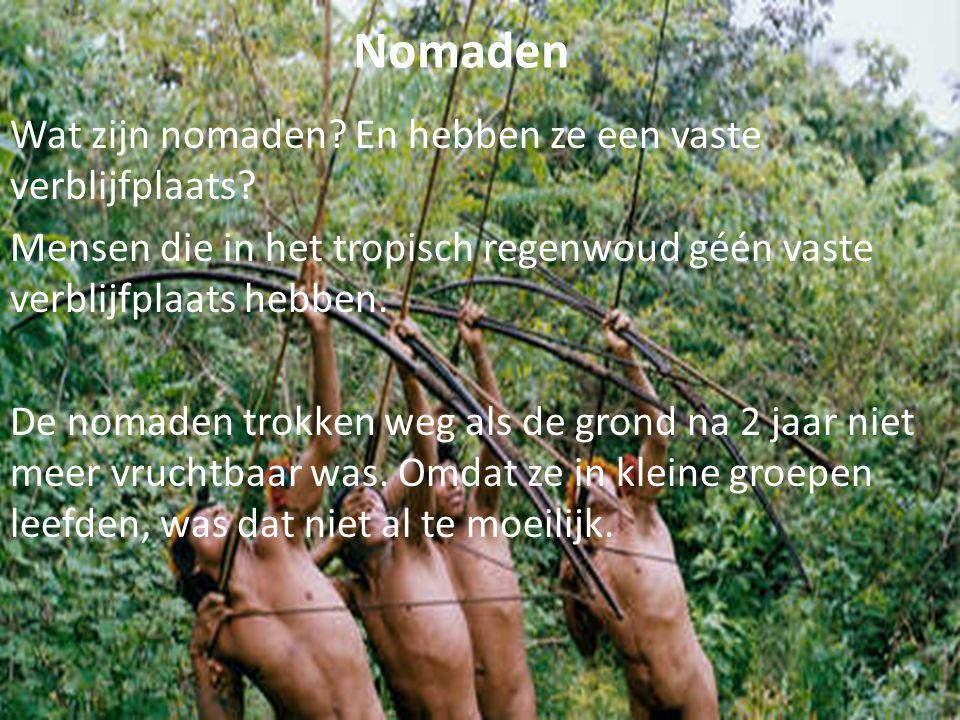 Nomaden Wat zijn nomaden? En hebben ze een vaste verblijfplaats? Mensen die in het tropisch regenwoud géén vaste verblijfplaats hebben. De nomaden tro