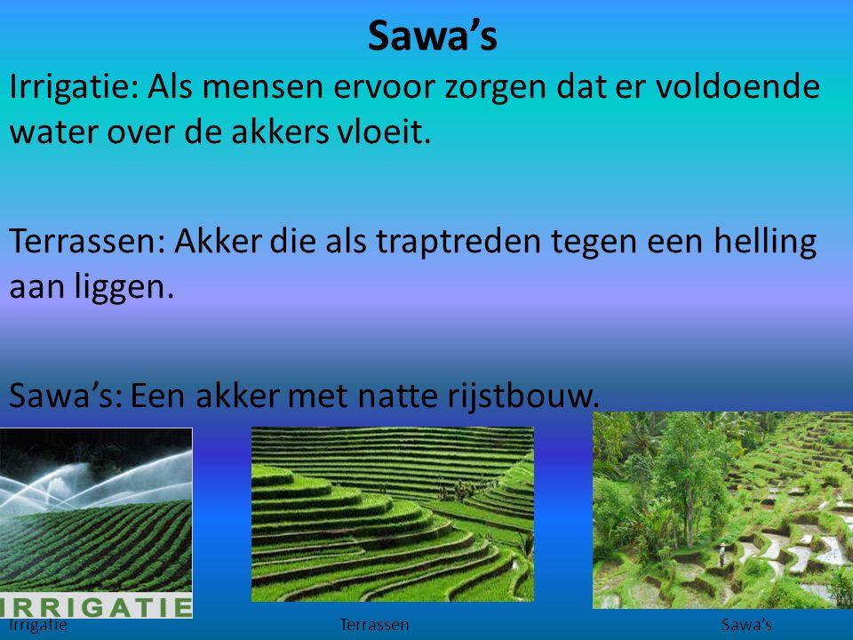 Sawa's Irrigatie: Als mensen ervoor zorgen dat er voldoende water over de akkers vloeit. Terrassen: Akker die als traptreden tegen een helling aan lig