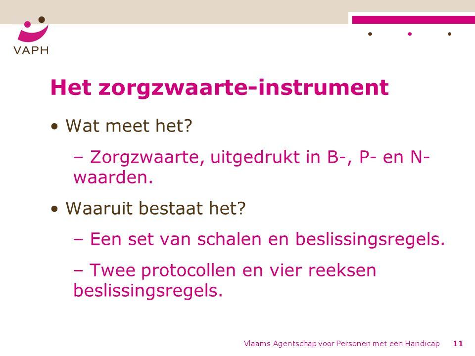 Vlaams Agentschap voor Personen met een Handicap11 Het zorgzwaarte-instrument Wat meet het.