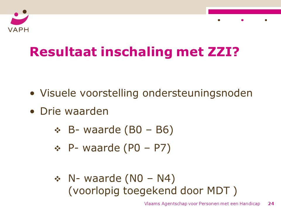Vlaams Agentschap voor Personen met een Handicap24 Resultaat inschaling met ZZI.