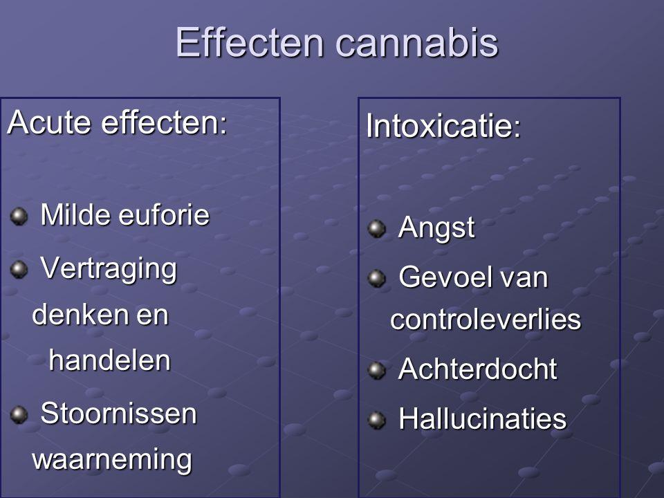 Effecten cannabis Acute effecten : Milde euforie Milde euforie Vertraging denken en handelen Vertraging denken en handelen Stoornissen waarneming Stoornissen waarneming Intoxicatie : Angst Angst Gevoel van controleverlies Gevoel van controleverlies Achterdocht Achterdocht Hallucinaties Hallucinaties