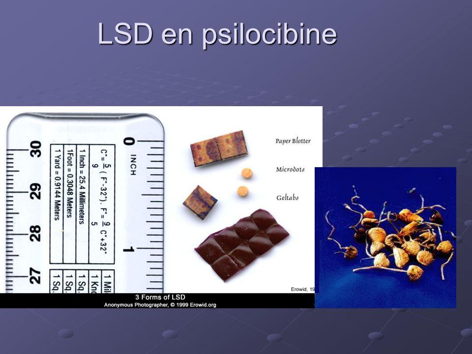LSD en psilocibine