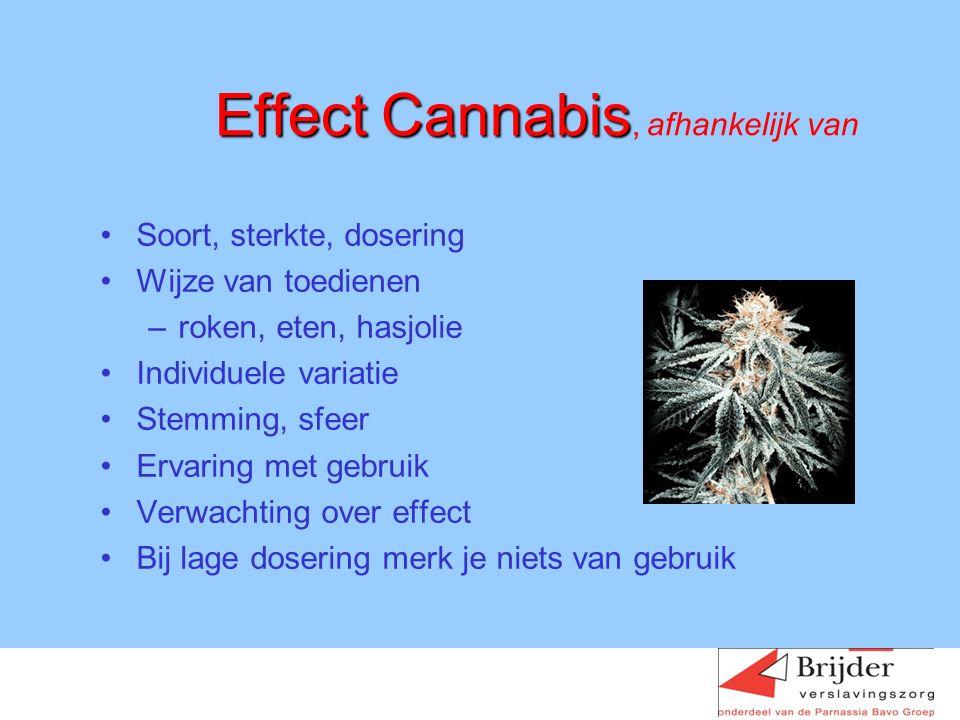 Effect Cannabis Effect Cannabis, afhankelijk van Soort, sterkte, dosering Wijze van toedienen –roken, eten, hasjolie Individuele variatie Stemming, sfeer Ervaring met gebruik Verwachting over effect Bij lage dosering merk je niets van gebruik