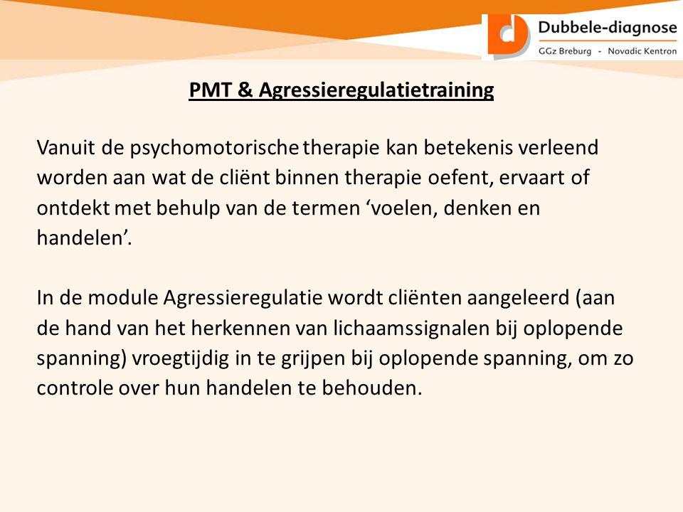 PMT & Agressieregulatietraining Vanuit de psychomotorische therapie kan betekenis verleend worden aan wat de cliënt binnen therapie oefent, ervaart of