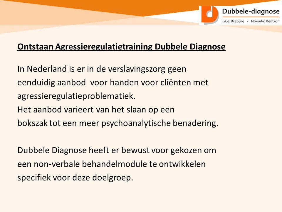In Nederland is er in de verslavingszorg geen eenduidig aanbod voor handen voor cliënten met agressieregulatieproblematiek. Het aanbod varieert van he