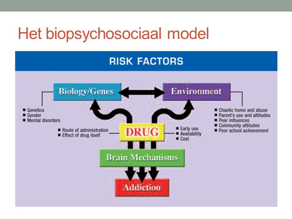Het biopsychosociaal model