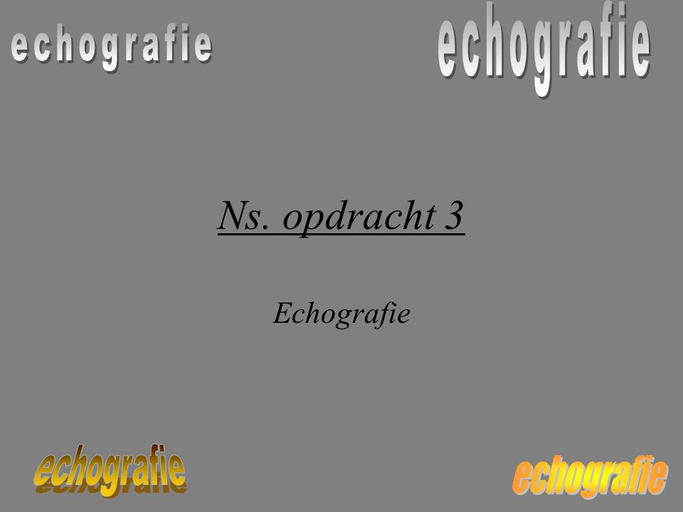 Ns. opdracht 3 Echografie