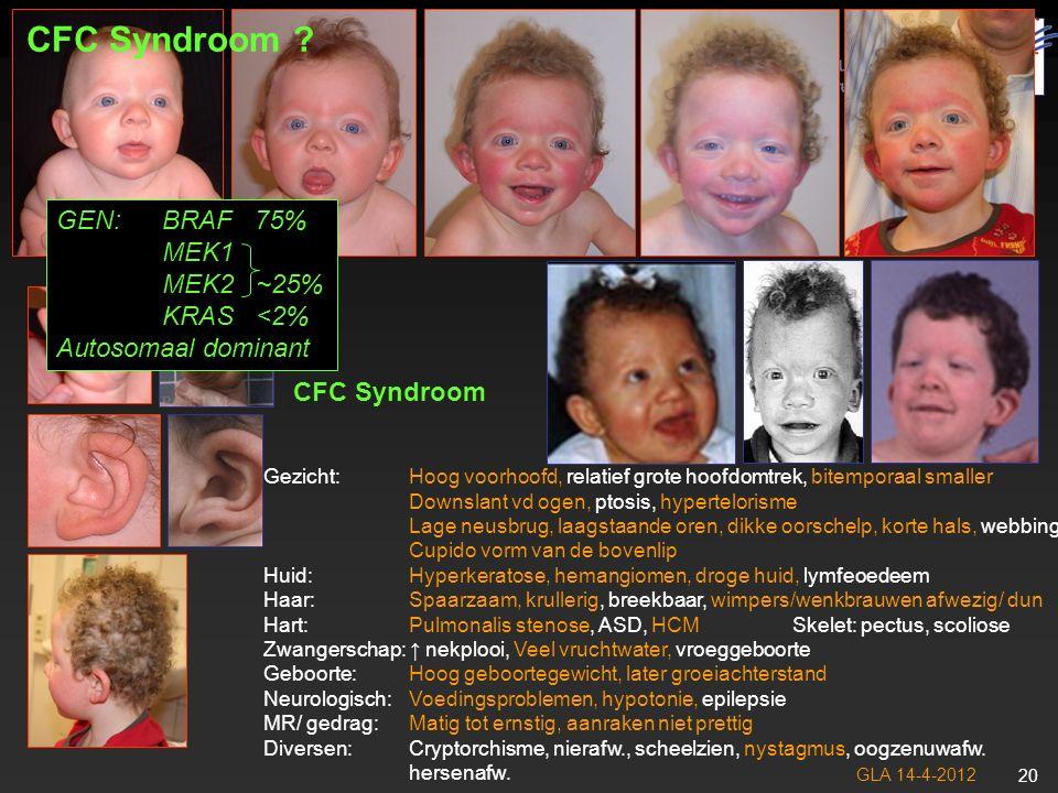 GLA 14-4-2012 21 NoonanCostelloCFC Gezicht Relatief groot hoofd, hoog voorhoofd +++ Downslant ogen +++ ↑ Oogafstand (hypertelorisme) +++ Laagstaande oren, dikke oorschelpjes ++++ Diep philtrum +-+ Cupido boog bovenlip --+ Huid Hyperkeratose, ↓ wimpers en wenkbrauwen --++ Papels om de mond, hyperpigmentatie -+- Caverneuze hemangiomen --+ Diepe hand en voetlijnen -++- Haar Spaarzaam krullend haar +/-+/-++ Hart PS, HCM, ritmestoornissen, ASD, VSD +++ Zwangerschap ↑ Nekplooi, veel vruchtwater +++ Geboorte/Groei Hoog geb.gewicht, daarna groei ↓ +++ Neurologisch Voedingsproblemen, hypotonie ++++ Epilepsie +++ Mentale retardatie +/-+/-+/++