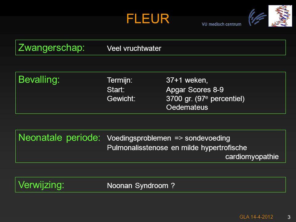 GLA 14-4-2012 4 FLEUR 7 maanden F.H.