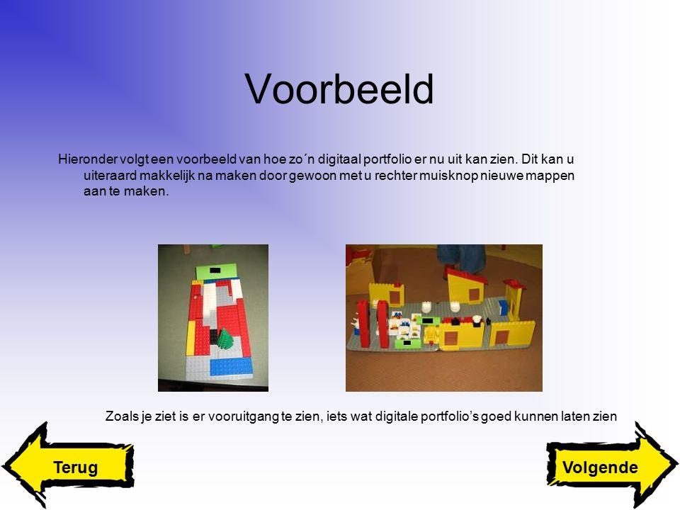 Voorbeeld Hieronder volgt een voorbeeld van hoe zo´n digitaal portfolio er nu uit kan zien.