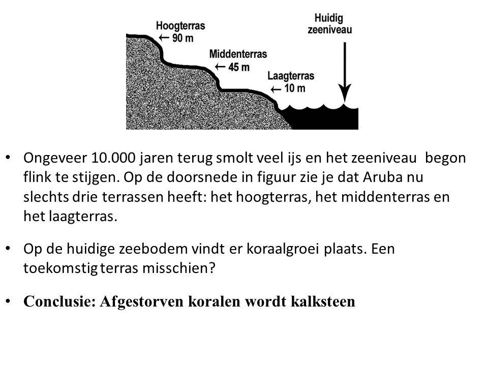 Ongeveer 10.000 jaren terug smolt veel ijs en het zeeniveau begon flink te stijgen. Op de doorsnede in figuur zie je dat Aruba nu slechts drie terrass