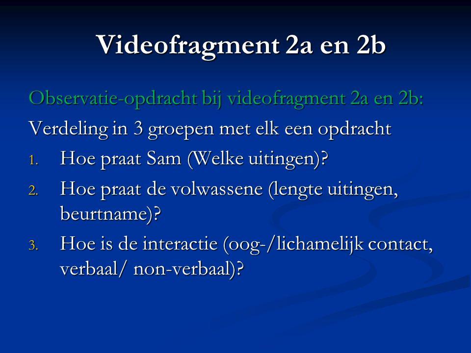 Videofragment 2a en 2b Observatie-opdracht bij videofragment 2a en 2b: Verdeling in 3 groepen met elk een opdracht 1. Hoe praat Sam (Welke uitingen)?