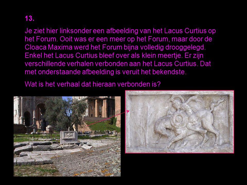 13.Je ziet hier linksonder een afbeelding van het Lacus Curtius op het Forum.
