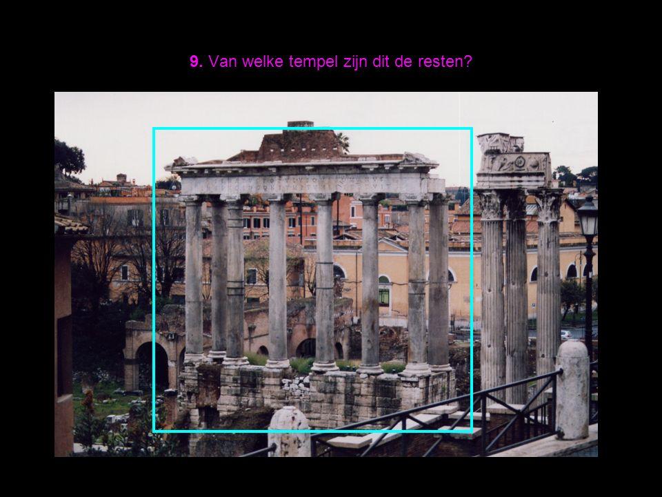 9. Van welke tempel zijn dit de resten