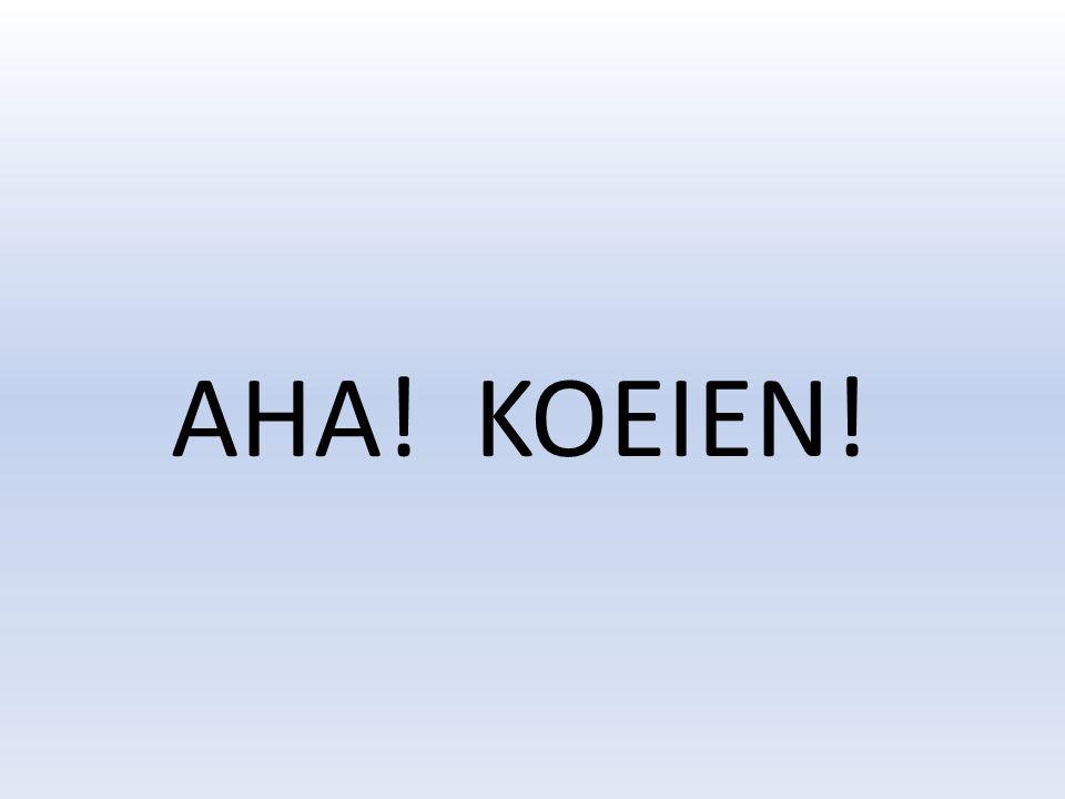AHA! KOEIEN!