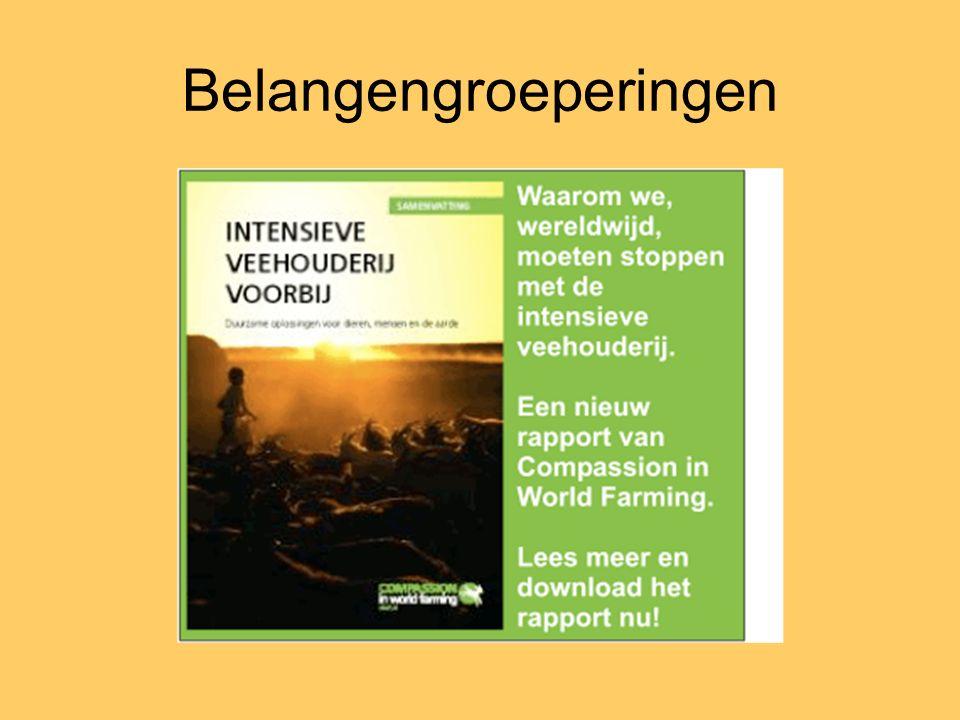 Fasenmodel publieke opinie IIIIII Informeelformeelmedia © Issues Management Institute, Amsterdam