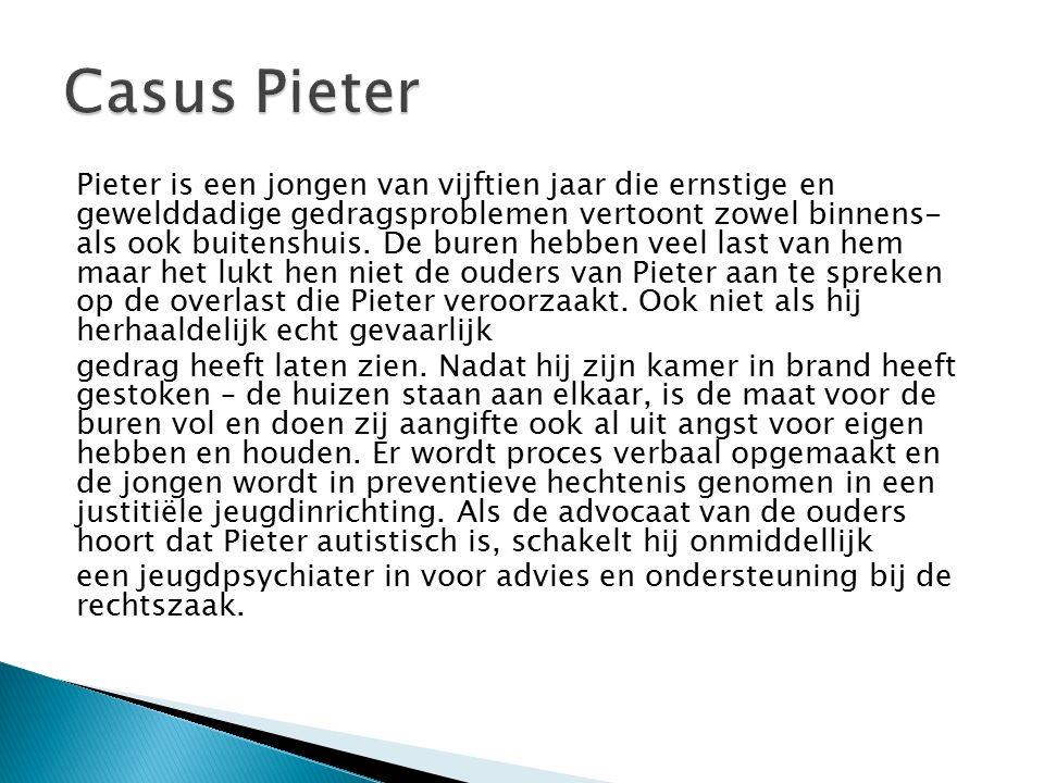 Pieter is een jongen van vijftien jaar die ernstige en gewelddadige gedragsproblemen vertoont zowel binnens- als ook buitenshuis.