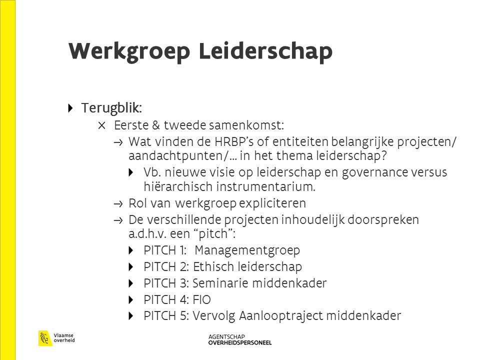 Werkgroep Leiderschap Terugblik: Eerste & tweede samenkomst: Wat vinden de HRBP's of entiteiten belangrijke projecten/ aandachtpunten/… in het thema leiderschap.