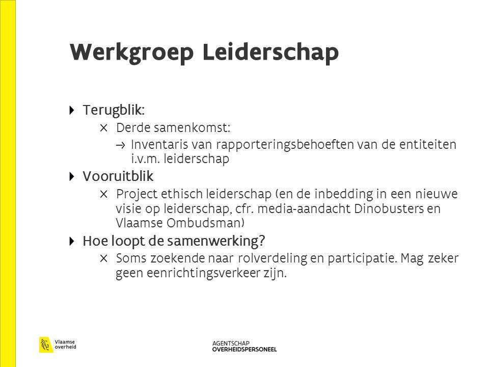 Werkgroep Leiderschap Terugblik: Derde samenkomst: Inventaris van rapporteringsbehoeften van de entiteiten i.v.m.