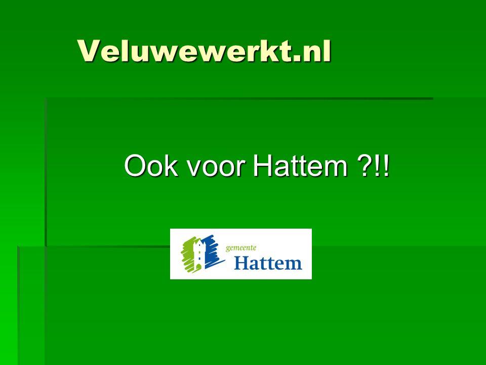 Veluwewerkt.nl Ook voor Hattem !!