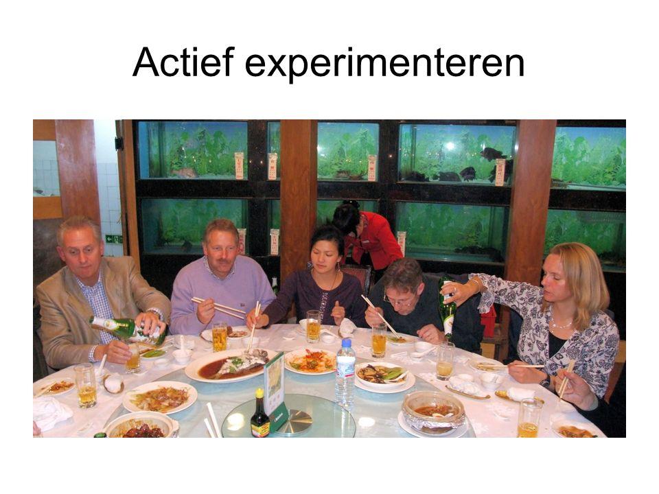 Actief experimenteren
