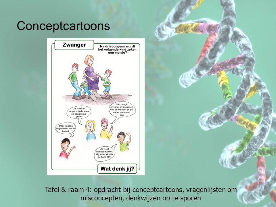 Tafel & raam 4: opdracht bij conceptcartoons, vragenlijsten om misconcepten, denkwijzen op te sporen