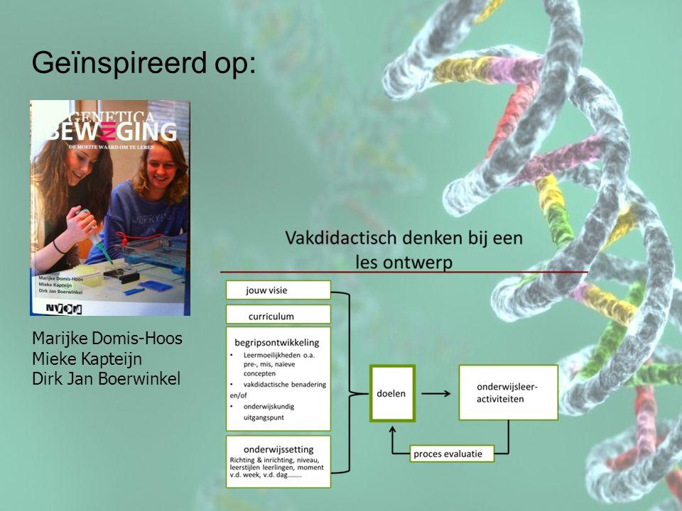 Geïnspireerd op: Marijke Domis-Hoos Mieke Kapteijn Dirk Jan Boerwinkel