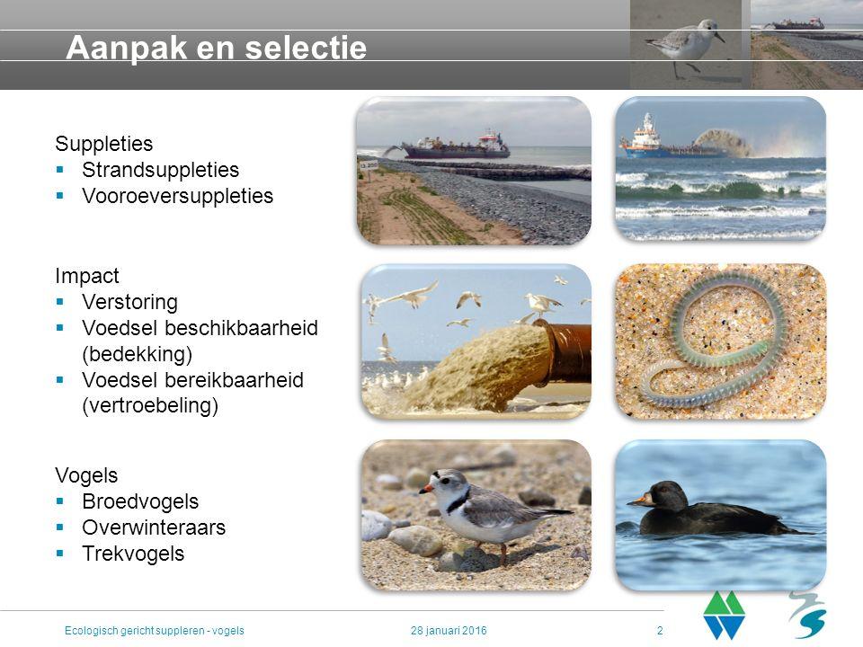 Aanpak en selectie 28 januari 2016Ecologisch gericht suppleren - vogels2 Suppleties  Strandsuppleties  Vooroeversuppleties Impact  Verstoring  Voedsel beschikbaarheid (bedekking)  Voedsel bereikbaarheid (vertroebeling) Vogels  Broedvogels  Overwinteraars  Trekvogels