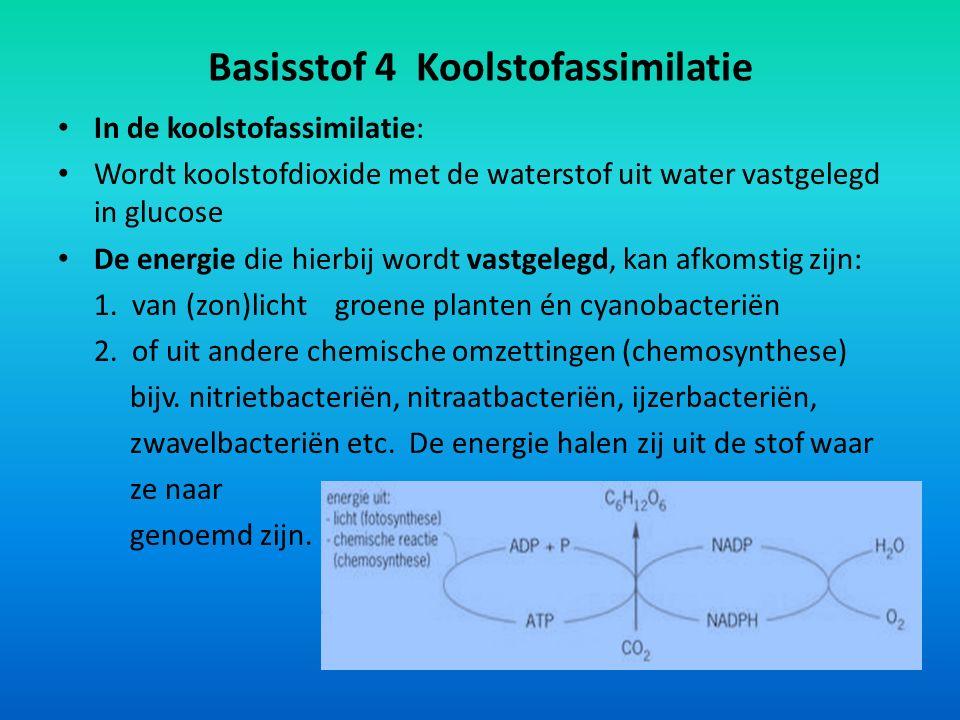 Basisstof 4 Koolstofassimilatie In de koolstofassimilatie: Wordt koolstofdioxide met de waterstof uit water vastgelegd in glucose De energie die hierb