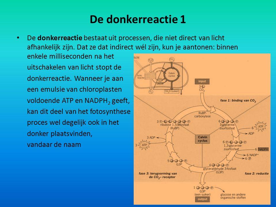 De donkerreactie 1 De donkerreactie bestaat uit processen, die niet direct van licht afhankelijk zijn. Dat ze dat indirect wél zijn, kun je aantonen: