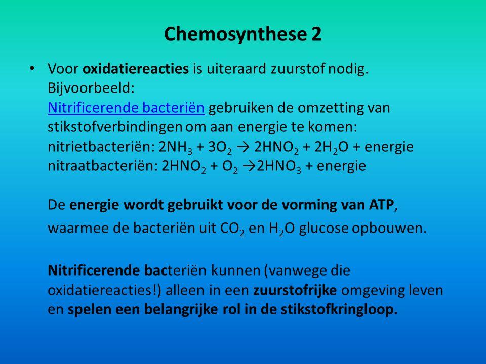 Chemosynthese 2 Voor oxidatiereacties is uiteraard zuurstof nodig. Bijvoorbeeld: Nitrificerende bacteriën gebruiken de omzetting van stikstofverbindin