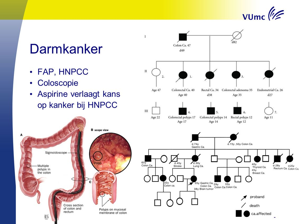 9 Darmkanker FAP, HNPCC Coloscopie Aspirine verlaagt kans op kanker bij HNPCC