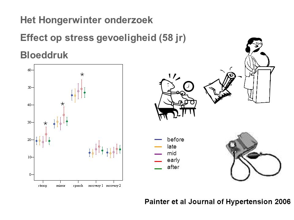 Het Hongerwinter onderzoek Effect op stress gevoeligheid (58 jr) Bloeddruk Painter et al Journal of Hypertension 2006 * * * * before late mid early after