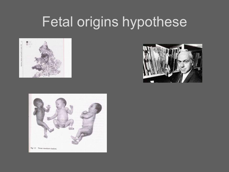 Fetal origins hypothese