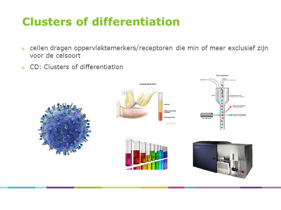 Clusters of differentiation cellen dragen oppervlaktemerkers/receptoren die min of meer exclusief zijn voor de celsoort CD: Clusters of differentiatio