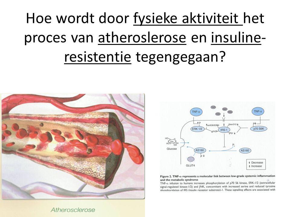 Hoe wordt door fysieke aktiviteit het proces van atheroslerose en insuline- resistentie tegengegaan?
